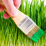 green-marketing-symbol