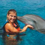 Six Flags delfines