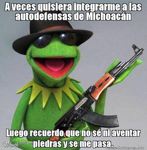 Los memes de la rana René 5