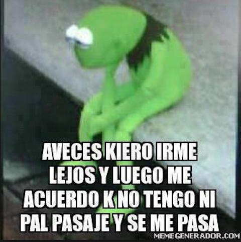 Los memes de la rana René 9