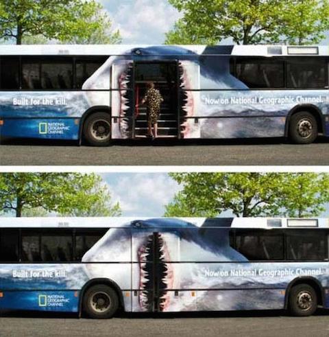 Publicidad en autobuses - Natgeo