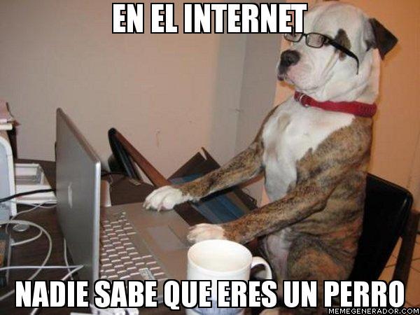 #Meme perro en internet