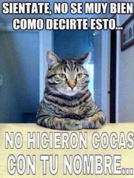 10 curiosos memes sobre la personalización de latas de Coca Cola