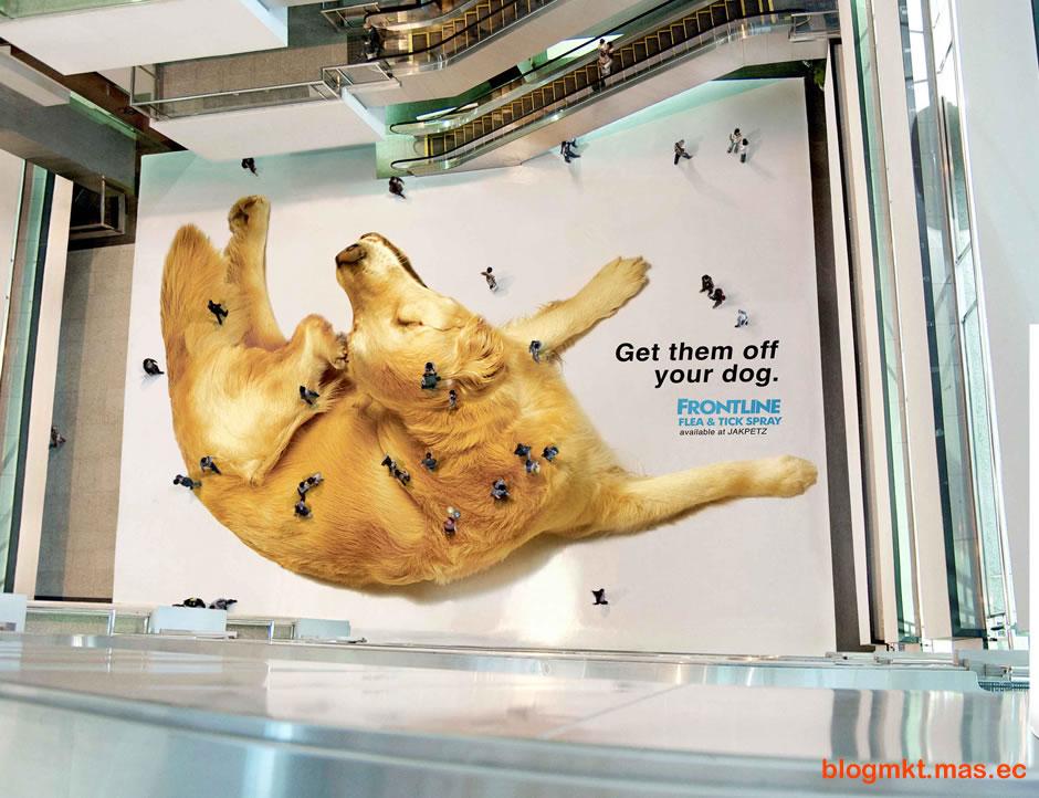 perro-pulgas-btl-marketing