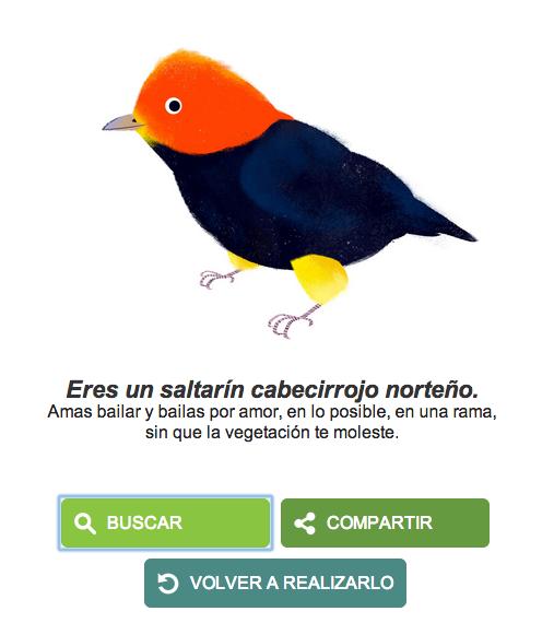 doodletierra1