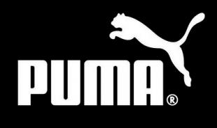 5 equipos que vestirán de Puma este 2017