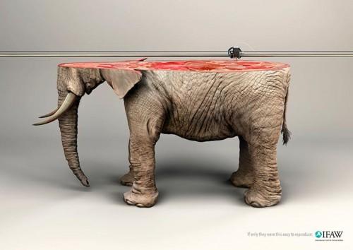3d-printed-endangered-species-2