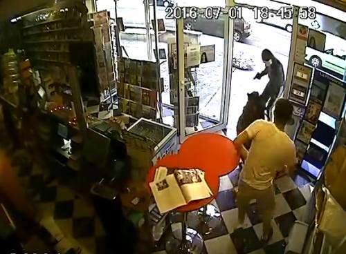 Perro atrapa ladron