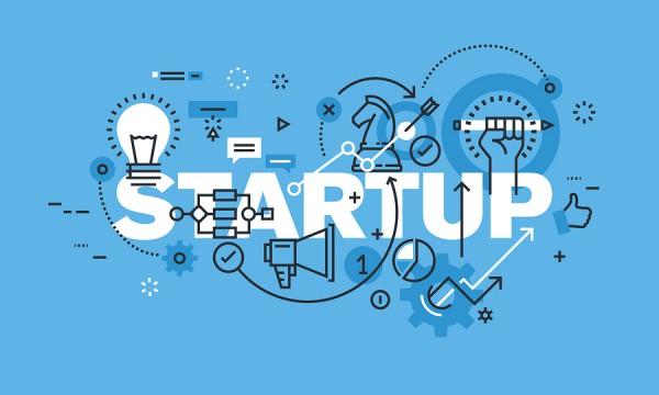 Marketing / Startup