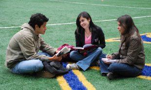 7 claves para hacer marketing de contenido para tu escuela