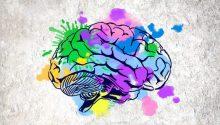 Mente y creatividad