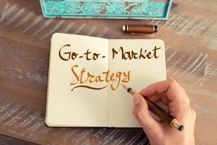 Go-to-market Strategy g2m