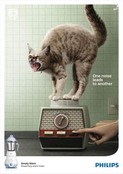 Póster de gato
