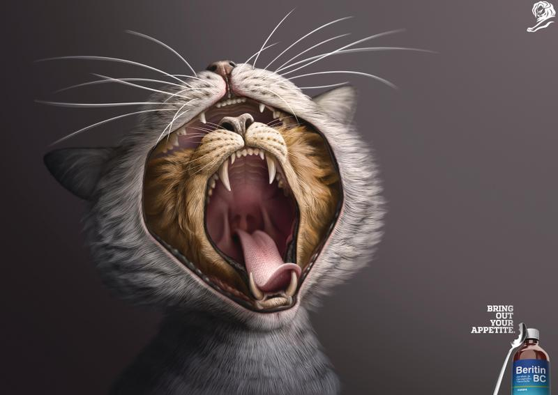 Cartel de gato